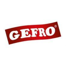 Logo Gefro